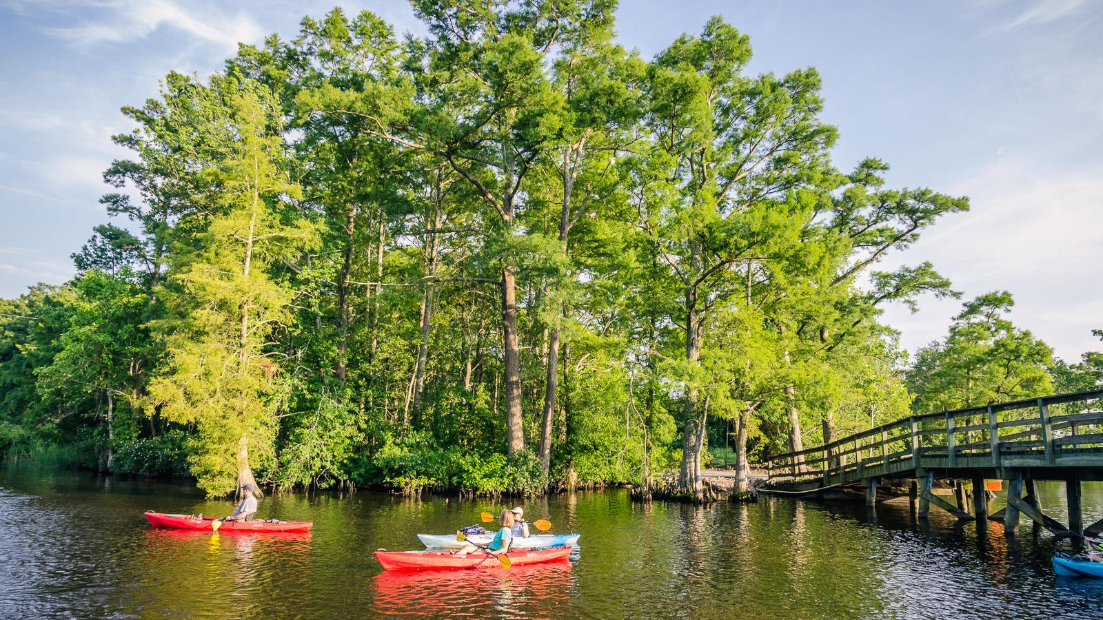 Kayaking on Queen Anne Creek, Edenton NC