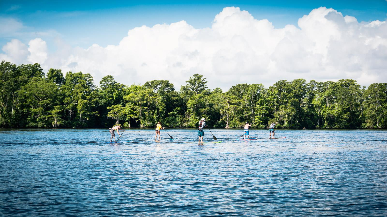 Paddleboarding in Edenton Bay